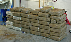 287 lbs of Marijuana seized during a traffic checkpoint