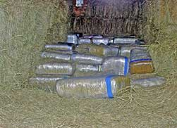 6,000 lbs of marijuana found hidden in hay bales